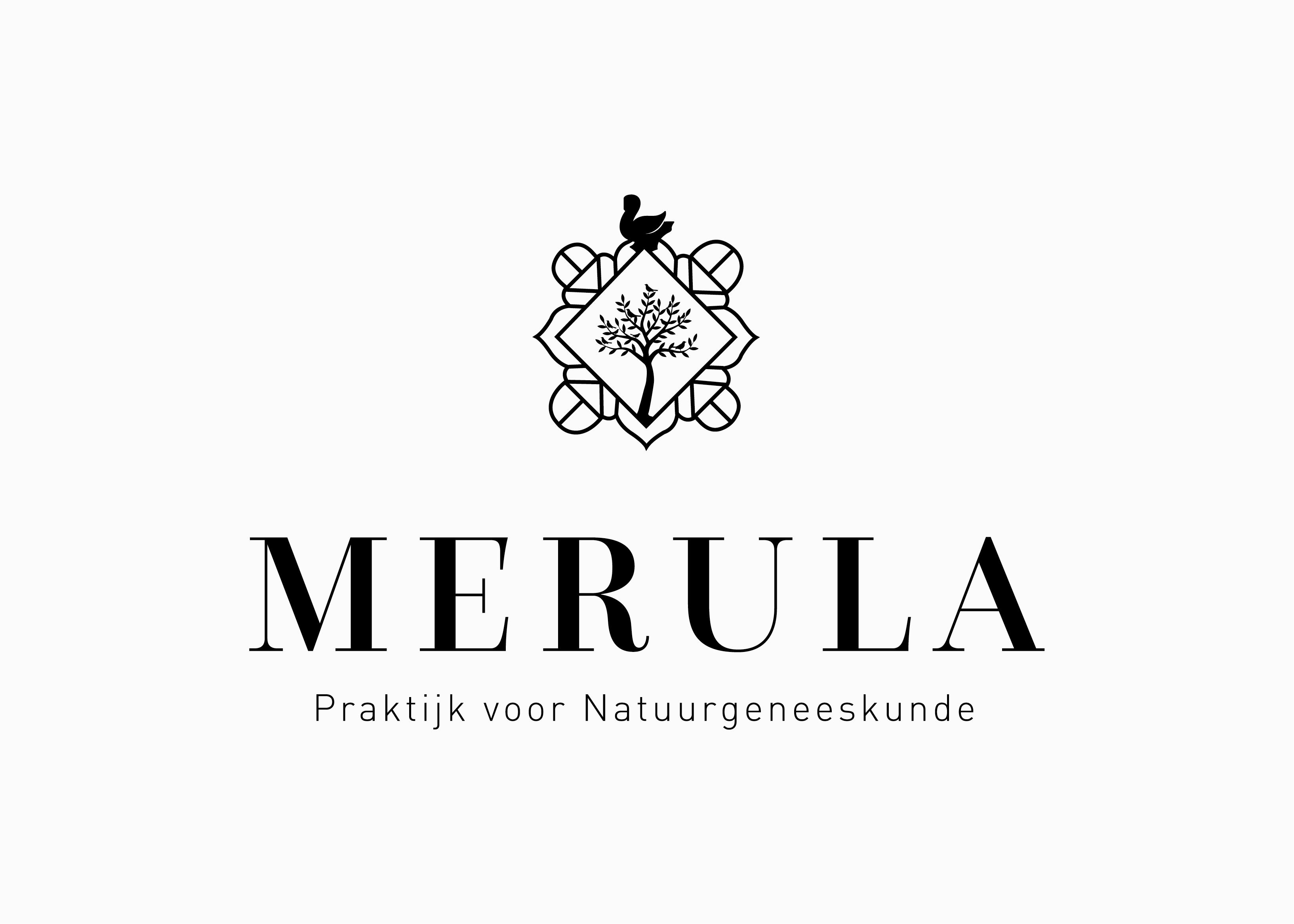 Voorbeeld van een logo ontwerp voor Merula in IJsselmuiden.. Ontwerpbureau: burowit in Kampen