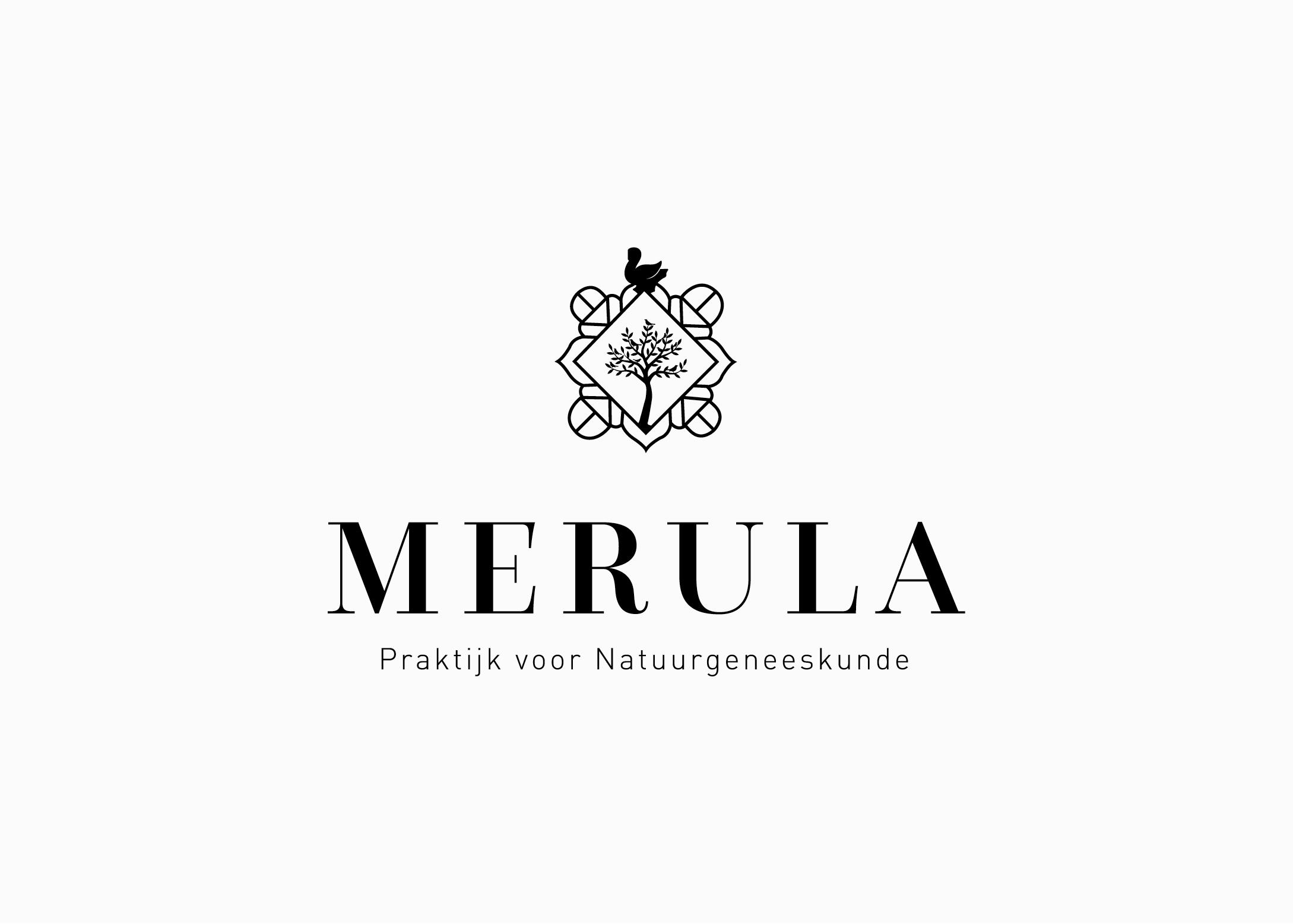 Logo-ontwerper-gezocht-Burowit-ontwerpbureau-Kampen-Thirza-Bakker-David-van-der-Toorn-Merula